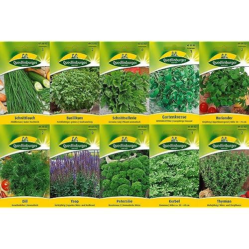 Semillas Aromaticas: Amazon.es