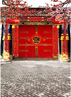 OFILA Chinese Spring Festival Backdrop 6.5x10ft Chinese Style Photography Background Chinese Lantern Fu Character Firecracker Calyx Canthus Chinese New Year Photos Kids Portraits Family Shoots Props