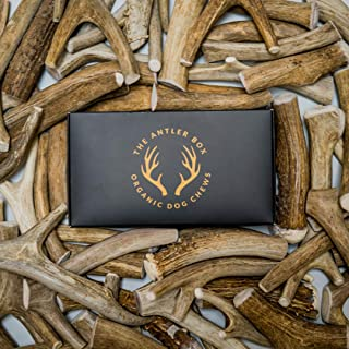 The Antler Box Premium Deer Antler Dog Chews (1 lb Bulk Pack) -Medium Large and XL Whole Antlers-Long Lasting Organic Chewing Toys Sourced from Naturally Shed Antlers in The USA