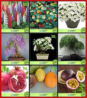 Creative Farmer High Quality Seeds Combo Flower Seeds & Fruit : Pomagranate, Passion Fruit - Yellow, Passion Fruit - Viole...
