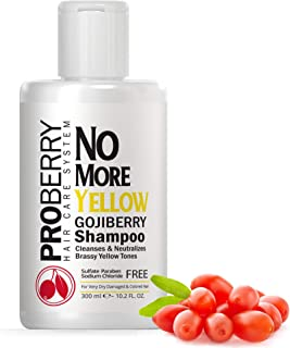 Goji Berry No Yellow Purple Shampoo for Blonde Hair - Fast Acting Blue Shampoo for Color Treated Hair - Instantly Clean & Neutralize Brassy Yellow Tones – Sodium Chloride & Paraben Free – 10.2 FL OZ