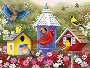 Bits and Pieces - 300 Large Piece Jigsaw Puzzle for Adults - Primary Colors - 300 pc Birds, Flowers, and Birdhouses Jigsaw by Artist Crista Forest