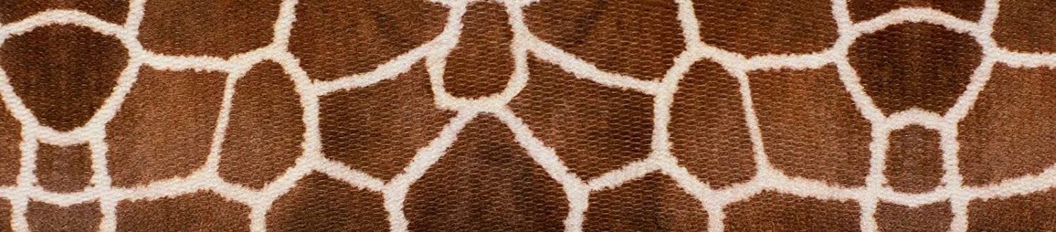 Country Brook Design - Limited price 1 Webbing Inch Polyester Baltimore Mall Giraffe