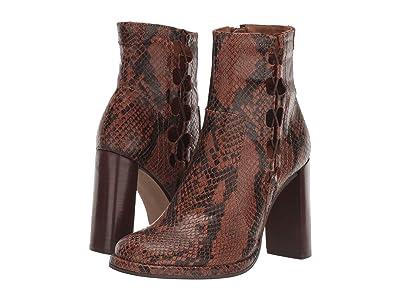 Free People Marietta Snake Print Heel Boot (Brown Combo) Women