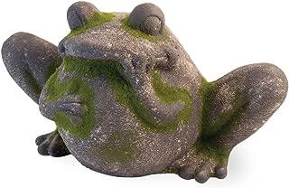 Boston International HYT18056 Celebrate The Home Decorative Moss Statue, Frog