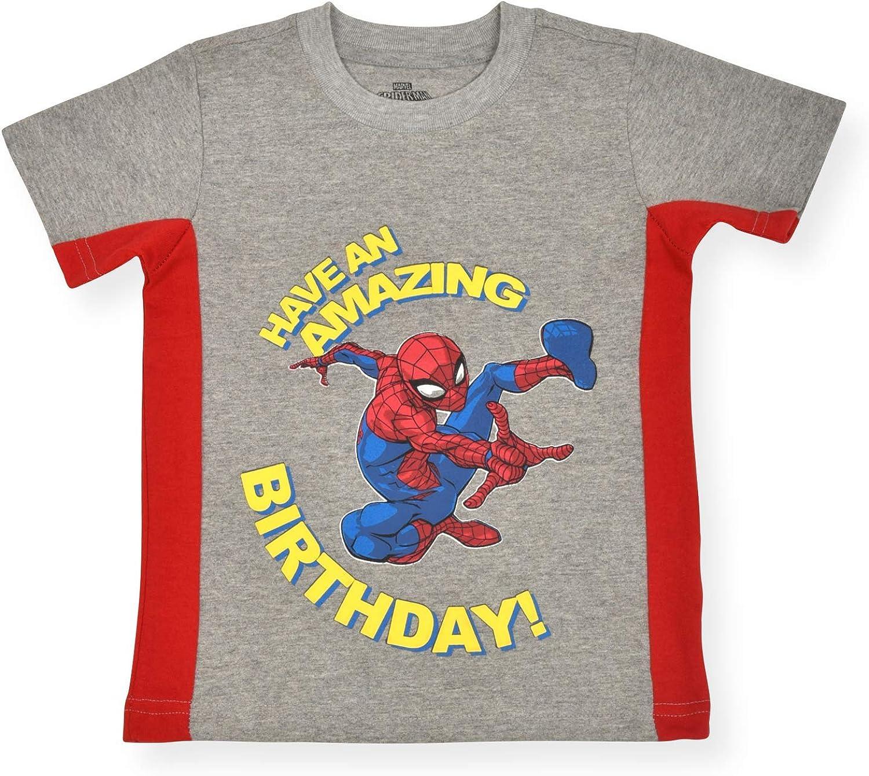 Marvel Boy's Spider-Man Pullover Birthday Tee Shirt, 100% Cotton