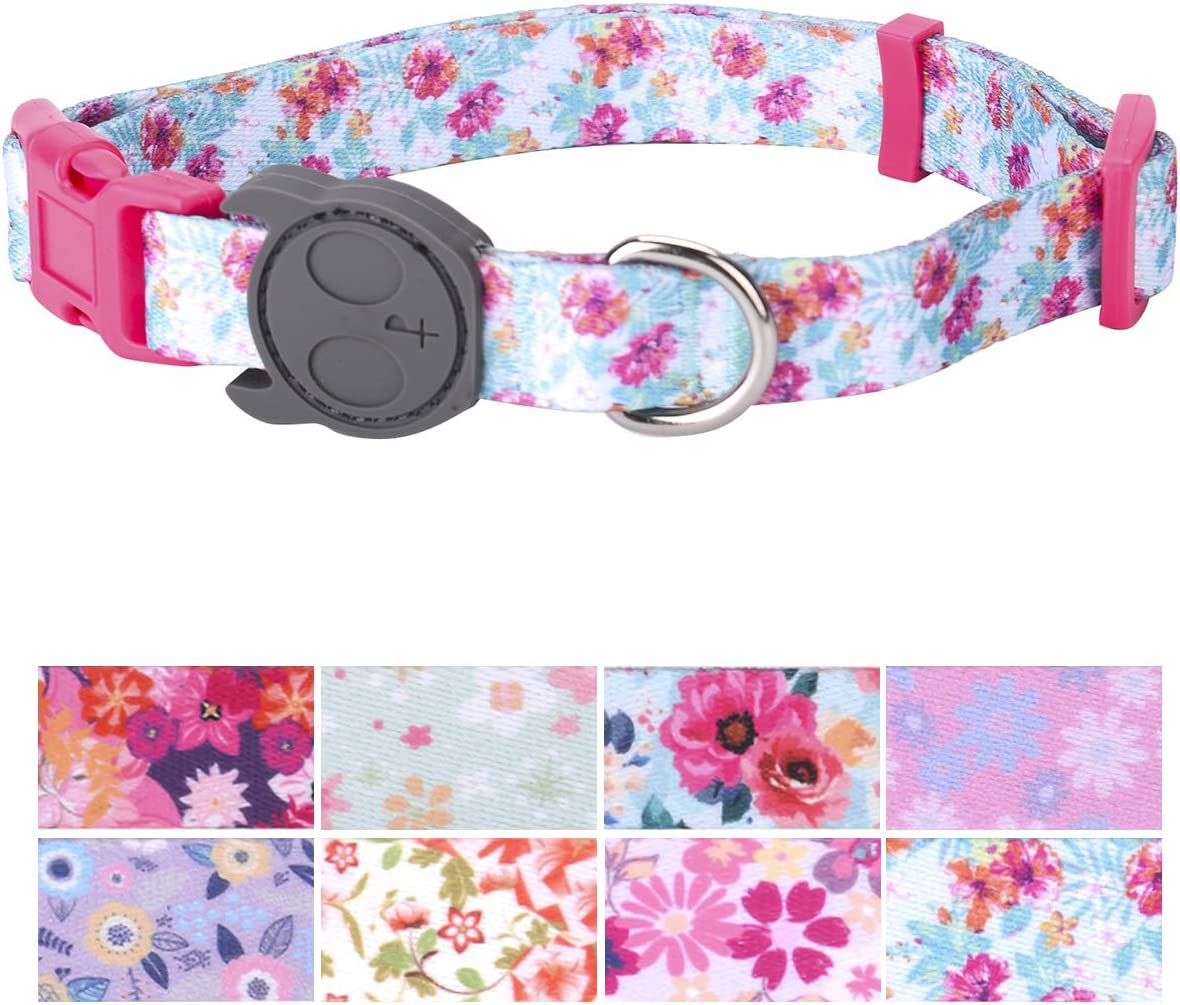 PetANTastic Best 2021 2021 autumn and winter new Adjustable Dog Collar Heavy Soft Durable Duty