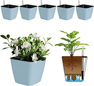 T4U 5.5 Inch Self Watering Plastic Planter with Water Level Indicator Pack of 6 - Blue, Modern Decorative Planter Flower P...