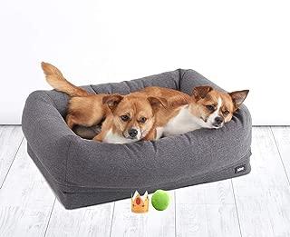 Best foam dog bed Reviews