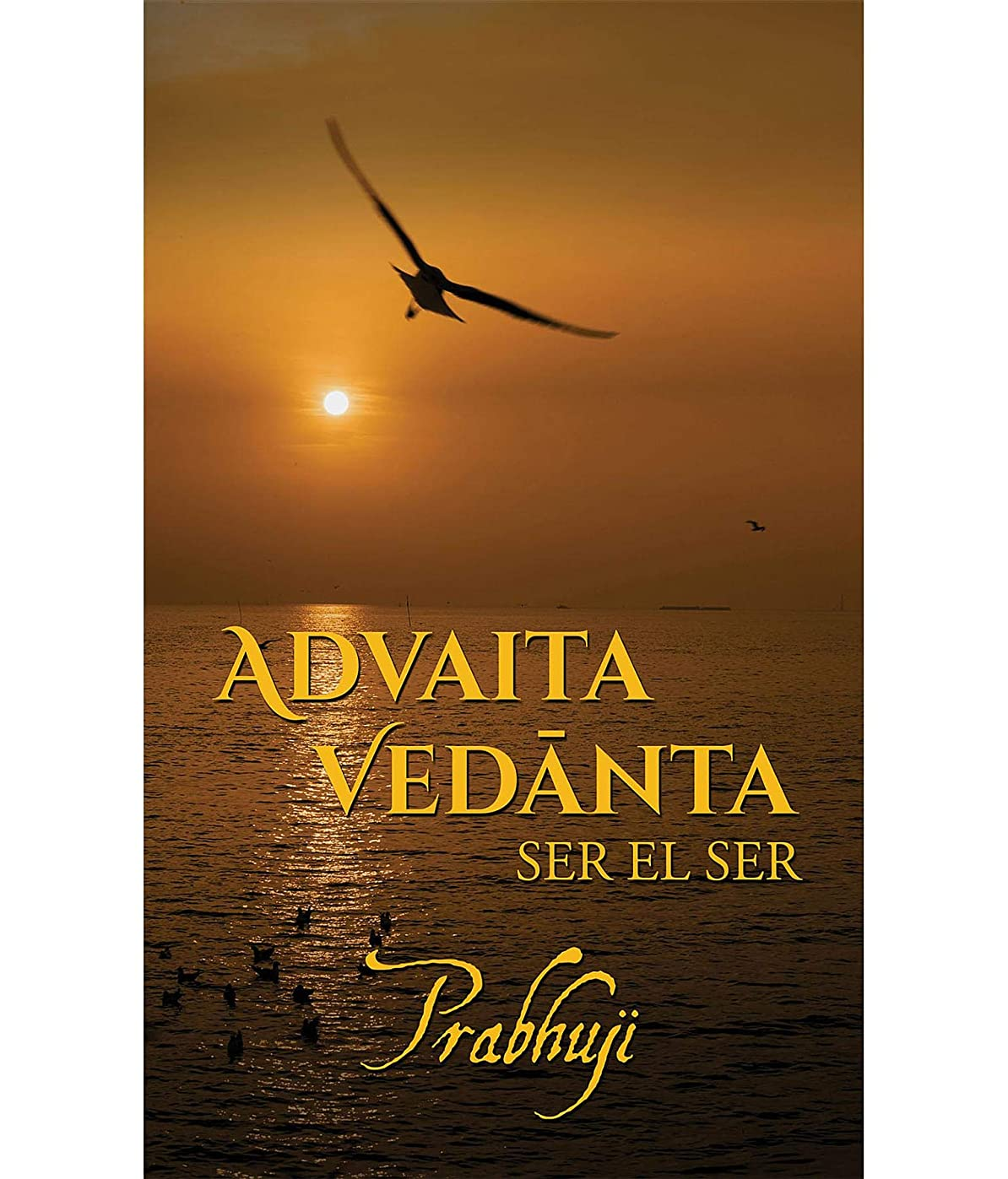 眠り願う仕事Advaita Vedanta: ser el Ser (Spanish Edition)