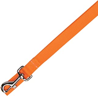 Zack & Zoey Basic Nylon Dog Leash, 4-Feet x 5/8-Inch Lead, Orange