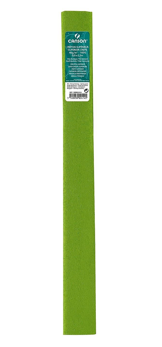 Canson Pack of 10 Rolls Superior Crepe Paper, 48 g/m2 0.5 x 2.5 cm 0,5 x 2,5 m Vert Printemps