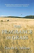Fragrance of Grass
