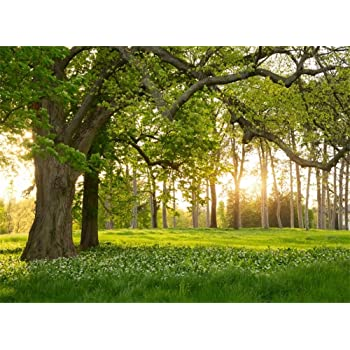 Zhy 7X5FT Green Mountain Grassland Photography Backdrop Spring Lawn Picture Nature Scenery Background Spring Safari Party Ground Decor Outdoorsy Theme Newborn Baby Shower Photo