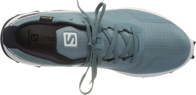 SALOMON Alphacross GTX, Chaussures de Course à Pied Homme Bleu Smoke Blue White India Ink