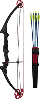 Best compound bows cheap Reviews