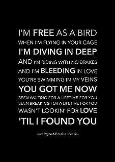 Liam Payne & Rita Ora (Vijftig tinten vrij) - voor u - Black Song Lyric Art Poster - A4 formaat
