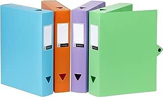 Viquel Maxi Corner Box trieur 24/posizioni in polipropilene Rainbow Class