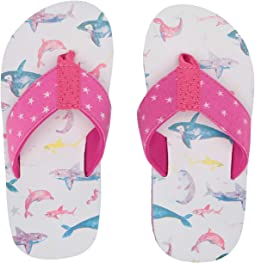 374f28667 Watercolour Sea Friends. Hatley Kids. Limited Edition Flip-Flop  (Toddler Little ...