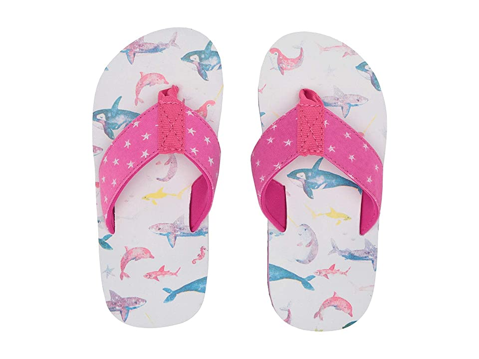 Hatley Kids Limited Edition Flip-Flop (Toddler/Little Kid) (Watercolour Sea Friends) Girl