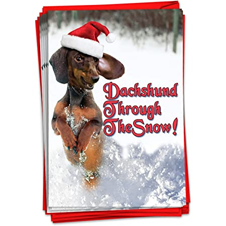 Dachshund Through The Snow 16 Christmas Holiday Cards with Envelopes