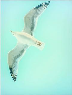 Bilderwelten Pizarra magnética - Blue Sky with Seagull 40x30cm