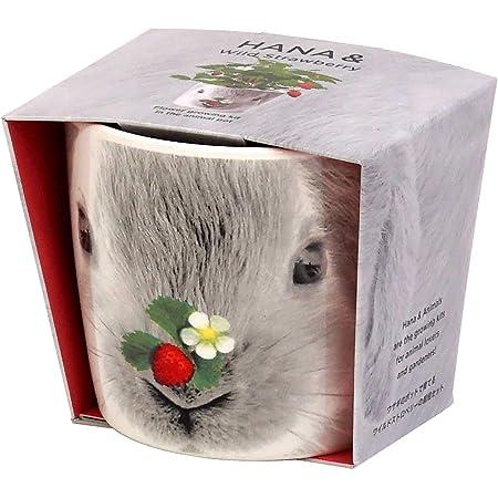 聖新陶芸 栽培セット ハナ&アニマルズ ウサギ ワイルドストロベリー GD-85801