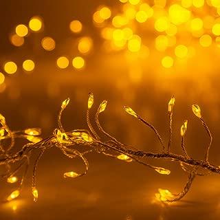 Best christmas fairy lights Reviews