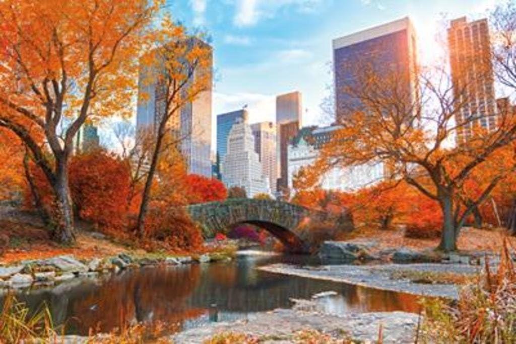 Autumn Park Colorful Landscape Art Print Poster 12x18