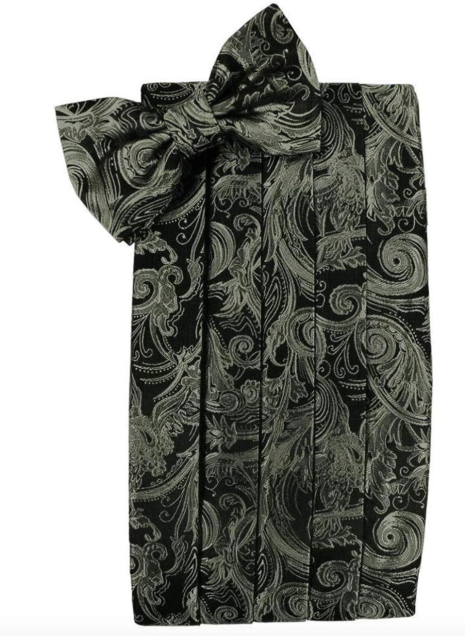 Tapestry Paisley Tuxedo Cummerbund and Bow Tie Set