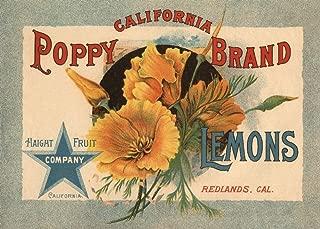 Redlands, California - California Poppy Brand - Vintage Label (9x12 Art Print, Wall Decor Travel Poster)