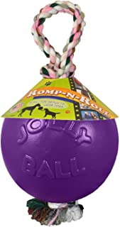 Jolly Pets Romp and Roll Ball Dog Toy Size: 4.5 inch, Color: Purple
