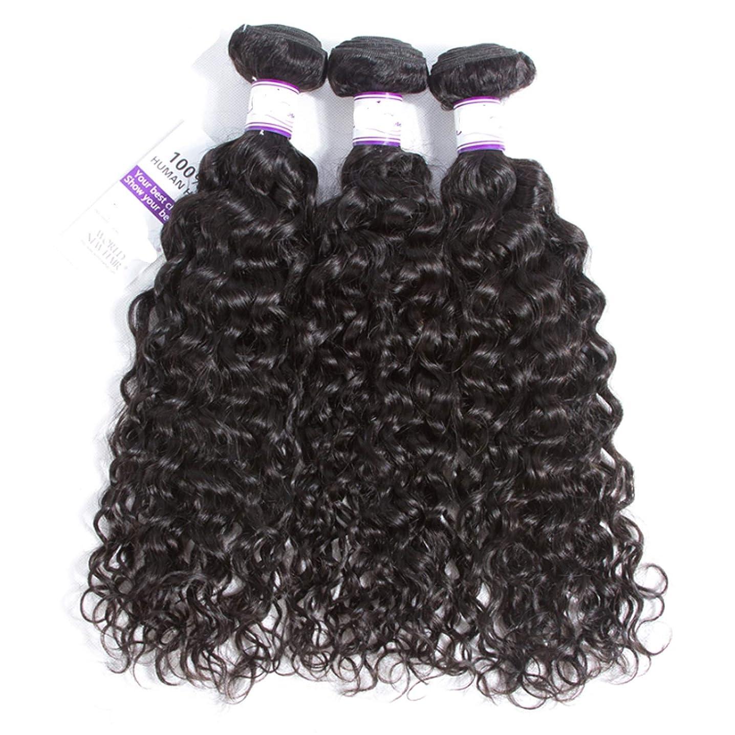 管理しますカロリー無数のマレーシアの水の波の髪3個ナチュラルブラック人間の髪の毛の束非レミーの毛延長8-28インチ かつら (Length : 20 20 20)