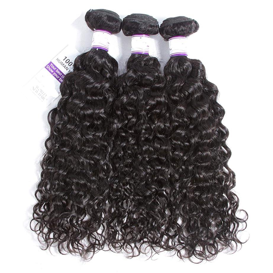 科学者パンチ大騒ぎマレーシアの水の波の髪3個ナチュラルブラック人間の髪の毛の束非レミーの毛延長8-28インチ かつら (Length : 20 20 20)