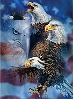 Iulove Eagle 40 30cm Full Drill Point Drill Painting 5D Embroidery Paintings Rhinestone Pasted DIY Diamond Painting Cross Stitch,Man-Made Diamonds Setting Skills