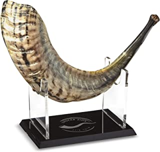 Shofar Zion Kosher ODORLESS SEMI-Polished Shofar | Rams Horn | Smooth Mouthpiece for Easy Blowing | Made in Israel | Inclu...