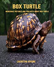 Box Turtle: Incredible Pictures and Fun Facts about Box Turtle