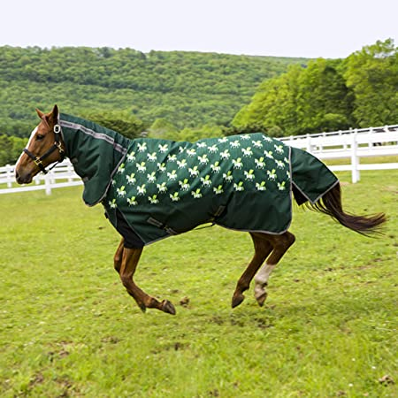 600 Denier with 300g Fill Barnsby Equestrian Waterproof Horse Winter Blanket//Turnout Rug with Neck Combo