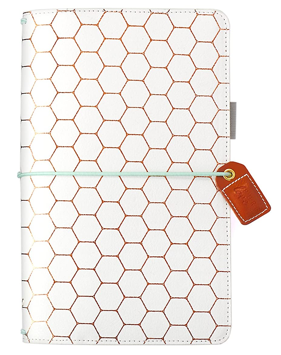 Webster's Pages Copper Hexagon Traveler Notebook (TJ001-H)