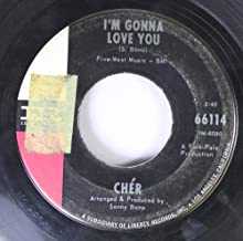 Cher 45 RPM I'm Gonna Love You / All I Really Want To Do