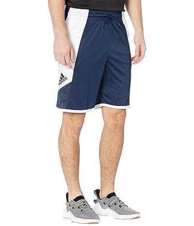 adidas Pro Madness Shorts (Collegiate Navy) Men