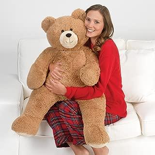 large soft teddy bear