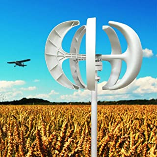 Gdrasuya 600W 24V VAWT 5 Blades Lantern Outdoor Vertical-axis Wind Turbine AC Generator + Controller Nylon Fiber Electromagnetic Power Wind Turbines USA Stock