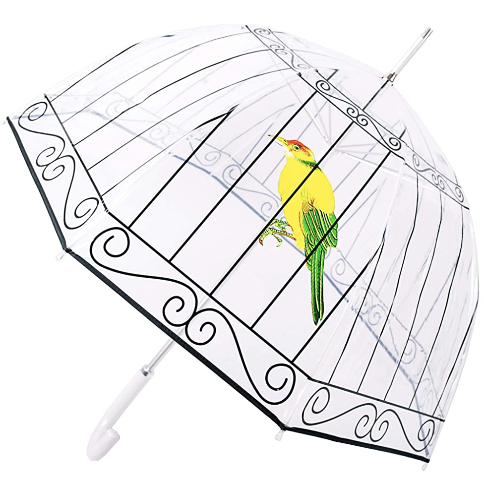 Kung Fu Smith Birdcage Bubble Clear Umbrella for Girls, Windproof Transparent Rain Umbrella