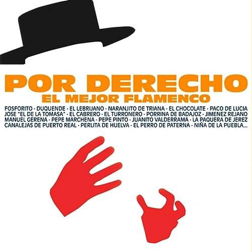Por Derecho el Mejor Flamenco de Various artists en Amazon ...