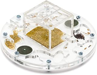 AntHouse - Hormiguero Acrílico Medium-Círculo 15x15x1,3 cm con Tapadera | Sistema de Humedad por Espuma | Hormigas Gratis Incluidas