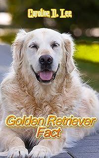 Golden Retriever Fact: Animal fact for girl age 1-10 Animal fact for boy age 1-10 what is a golden retriever golden retrie...