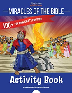 Miracles of the Bible Activity Book