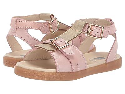 Bobux Kids Hera (Toddler/Little Kid) (Blush Shimmer/Gold) Girls Shoes