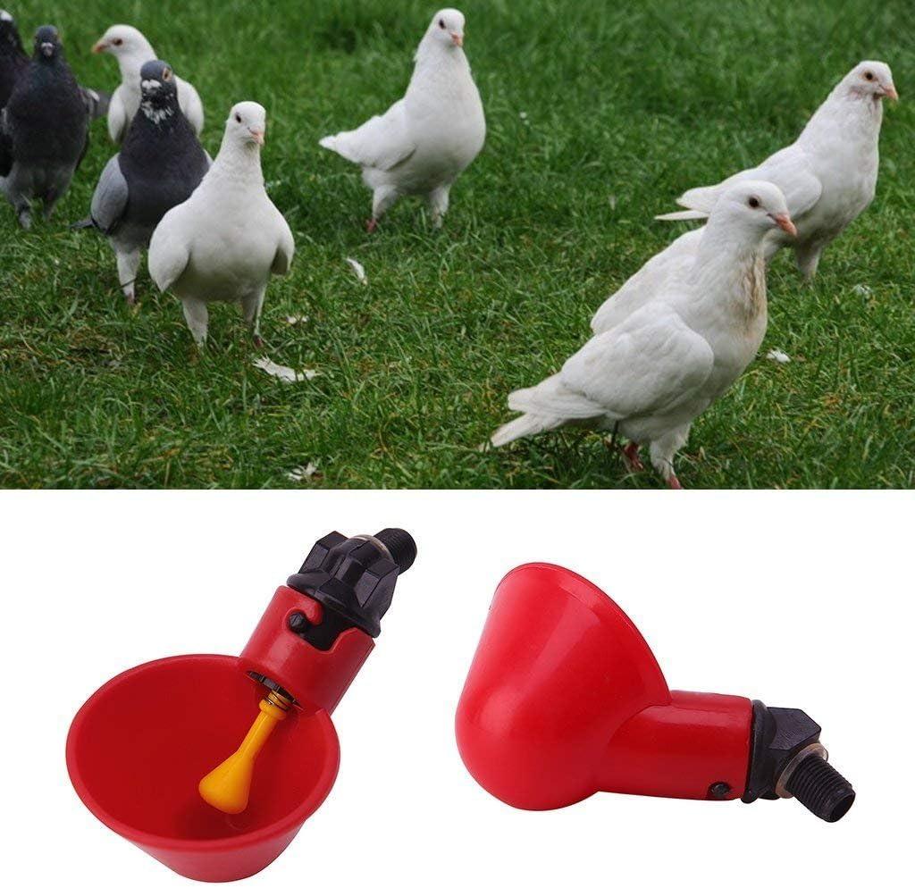 potabile rossa PanDada per uccelli molto pratico Abbeveratoio automatico per galline dacqua pollame 5 pezzi galline abbeveratoio in plastica